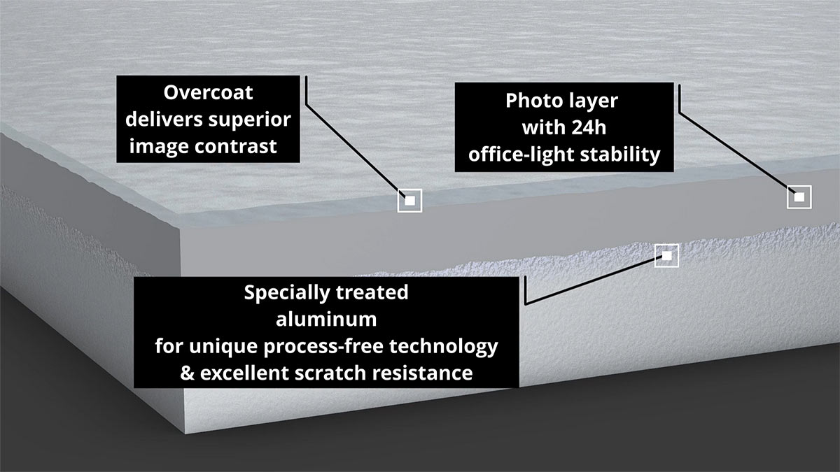 Avatar T-ZP plate structure