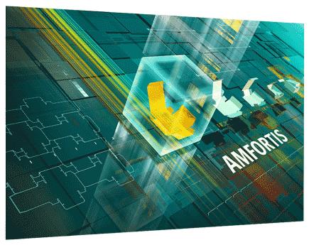 Amfortis packaging workflow